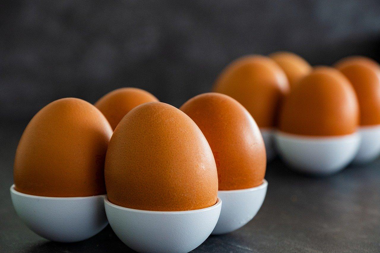 putih telur untuk wajah