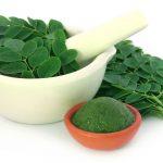 cara mengolah daun kelor untuk darah tinggi